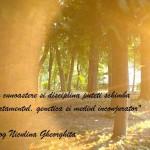 De meditat si actionat