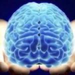 Conectarea cerebrală în relația părinte – copil